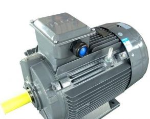 AEEV1H200L-6 22KW  AEEV2N机型 可代替YE2-200L-6 22KW 卧式