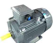 AEEV1H132M-6 4KW  AEEV2N机型 可代替YE2-132M-6 4KW 卧式