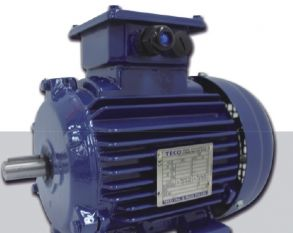 AEEV3N超高效三相异步电机(MODEL:TEV3)