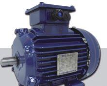 AEEV4N超超高效三相异步电机(MODEL:TEV4)