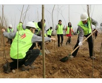 【造纸】建环保工厂 创森林城市