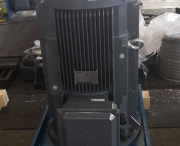 东元立式电机配NU轴承应用于造纸行业
