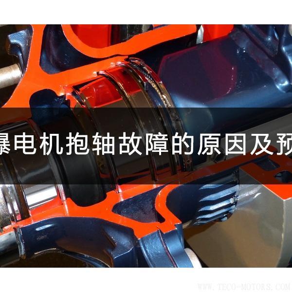 防爆电机抱轴故障的原因及预防 电机知识 第1张