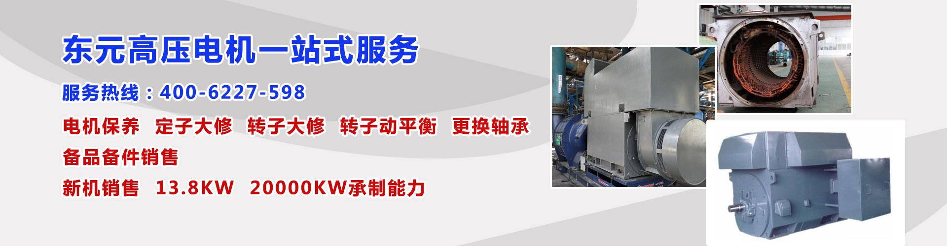 东元高压电机