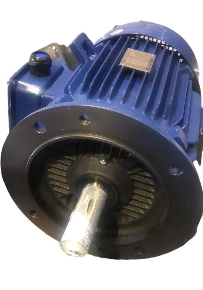 AEUV3N超高效三相异步电机(MODEL:TEV3)